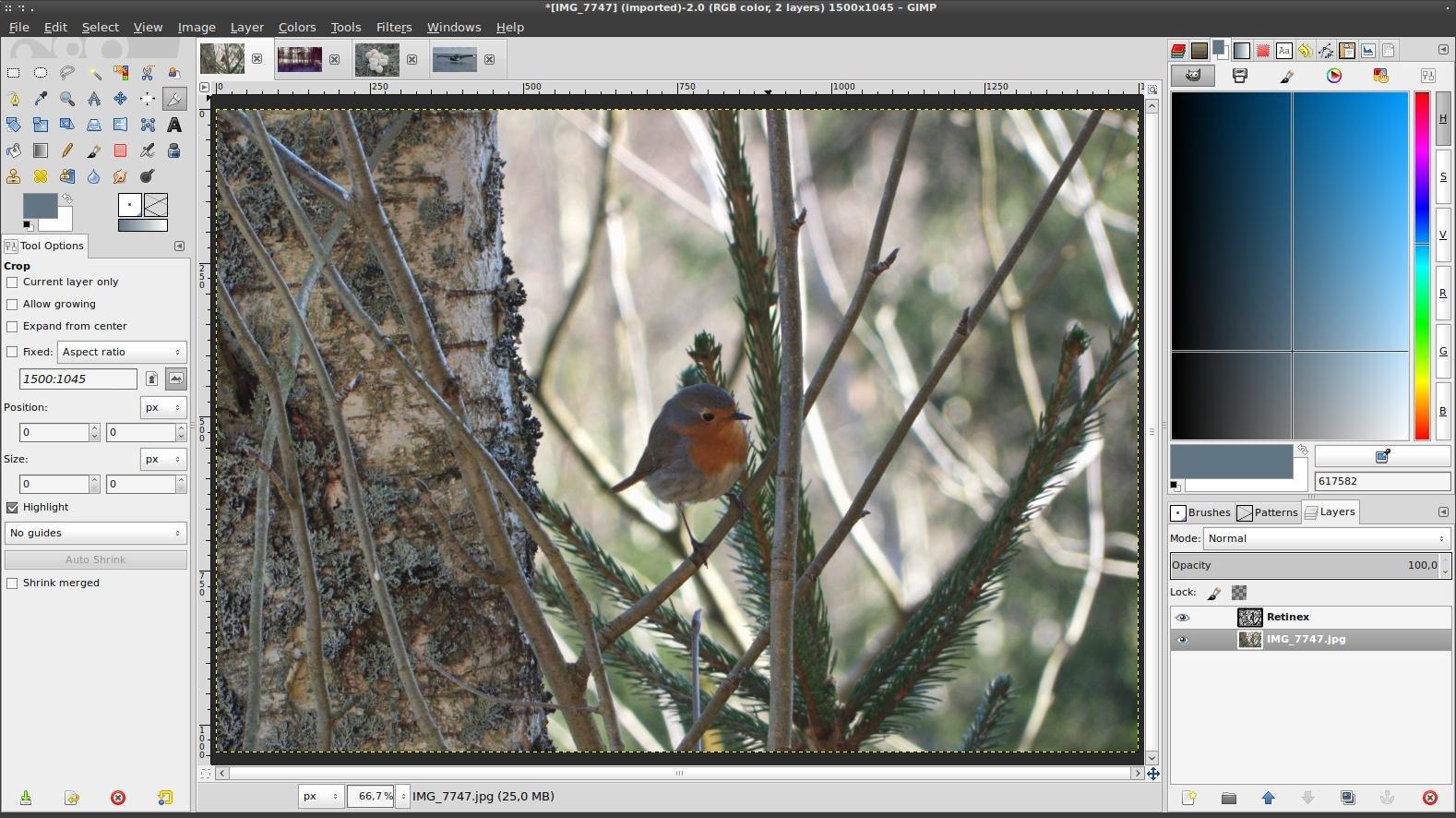 GIMP Screenshot with a loaded image